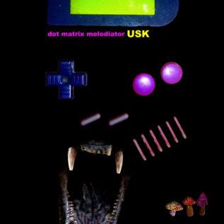 USK唯一のCDアルバムがBandcampに登場